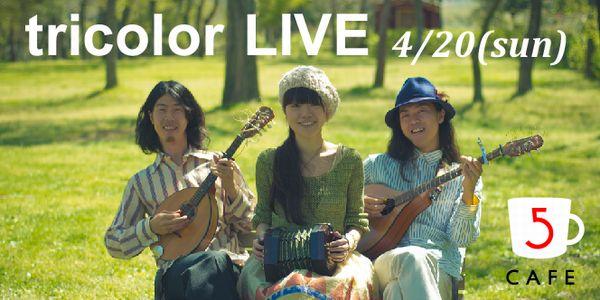 tricolor_live.jpg